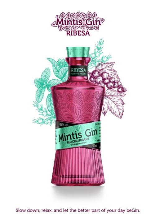 MINTIS RIBESA + 4x Sanpellegrino Tonic ZDARMA 070 41,8%